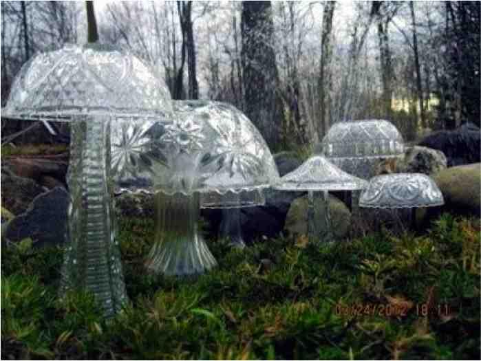crystal garden mushrooms 1 - Crystal Garden
