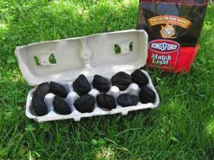 egg carton bbq starter