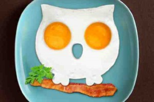 owl egg mold
