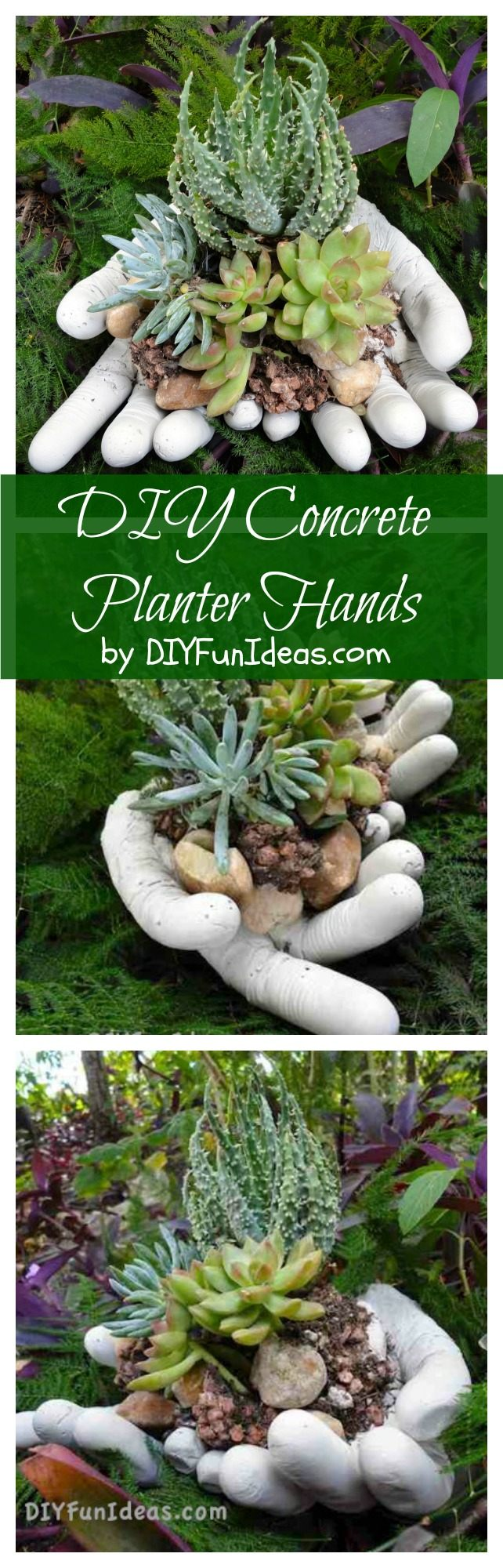 DIY succulent concrete planter hands