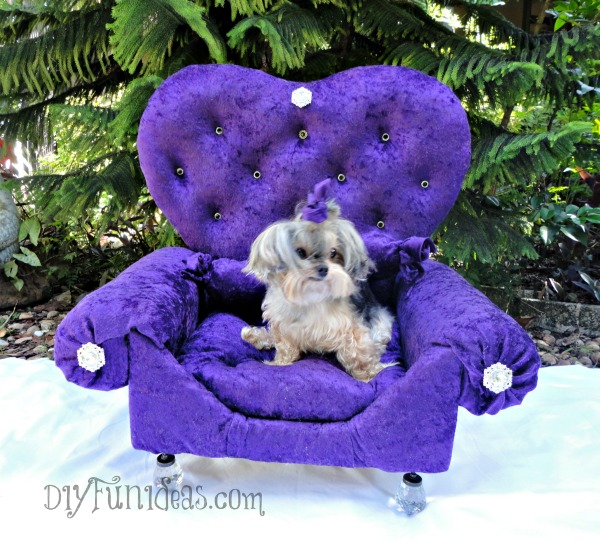 Admirable How To Make A Diy Princess Dog Bed From An Old Drawer Do Gmtry Best Dining Table And Chair Ideas Images Gmtryco