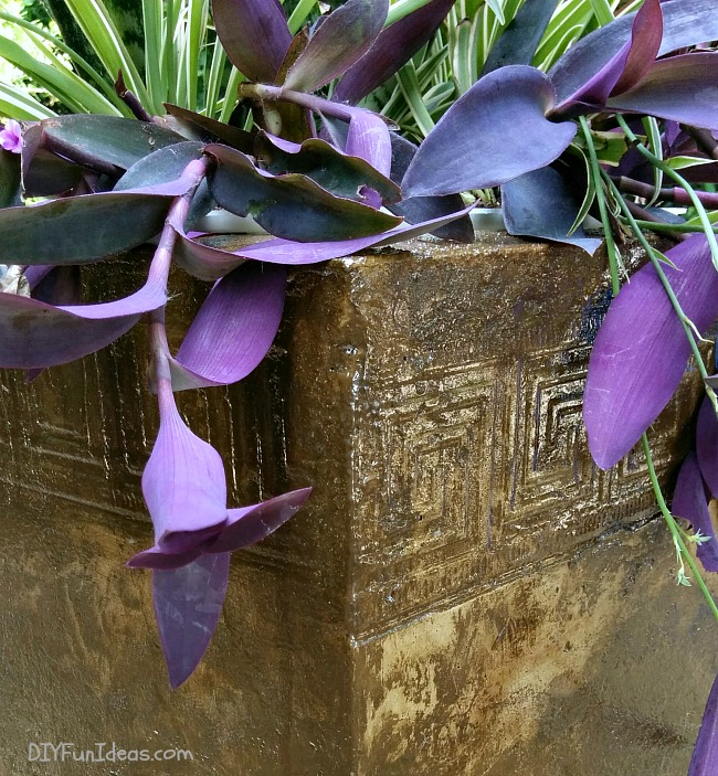DROP DEAD GORGEOUS DIY CONCRETE PLANTER
