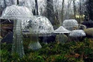 diy crystal garden mushrooms 1