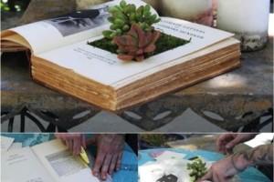 diy book planter