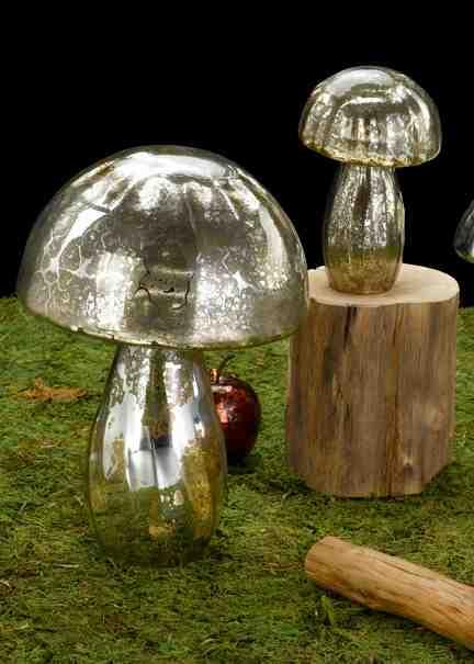 Diy Crystal Garden Mushrooms Do It Yourself Fun Ideas