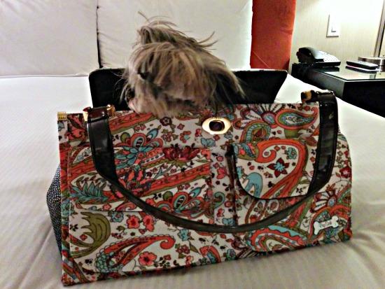 Lilys Bag